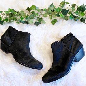 Sam Edelman Shoes - Sam Edelman Black Calf Hair Chelsea Ankle Booties